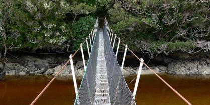 swinging-bridge