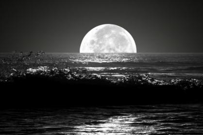 under-the-half-moon