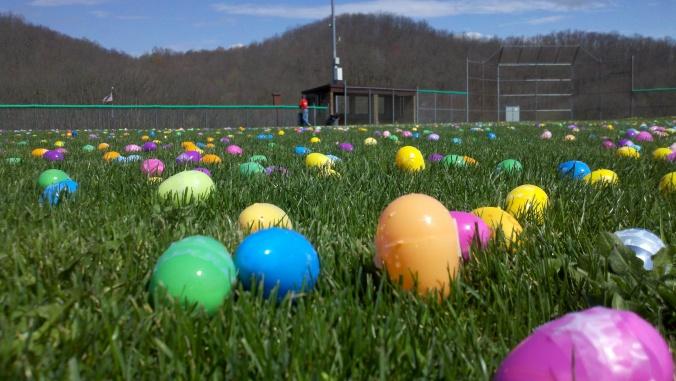Field of Eggs