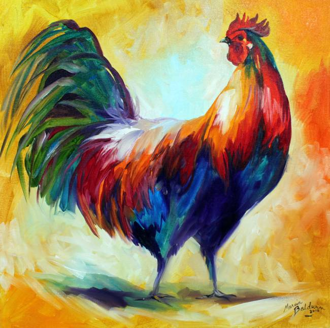 Rooster Colors